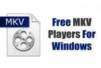 Best MKV Player Free Latest