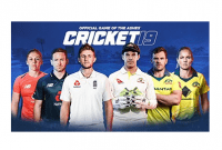 Cricket 19 For Windows